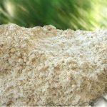 صدف معدنی گلستان