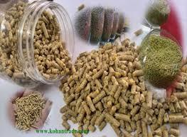 تولید خوراک دام وطیور از صدف معدنی