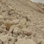 خرید باکیفیترین صدف معدنی در ایران