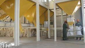 بزرگترین گروه تولیدی پودر صدف در کارخانه گلستان