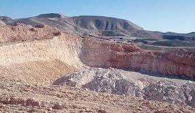 تولید کننده انحصاری صدف معدنی در کارخانه گلستان