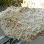 خرید اینترنتی صدف معدنی درب کارخانه گلستان