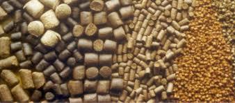 مزایا مصرف صدف معدنی در تهیه خوراک کارخانه ای
