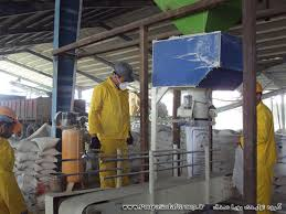 گروه تولیدی فروش صدف معدنی کارخانه گلستان
