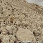 خرید مستقیم پودر صدف کوهی از کارخانه