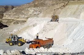 پرفروشترین سایز صدف معدنی پویا صدف