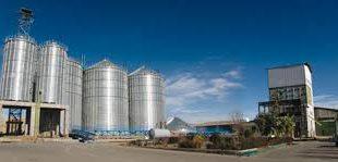 فروش صدف معدنی سایز پودری در کارخانجات خوراک