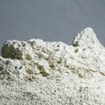 تولید کننده صدف معدنی طبیعی